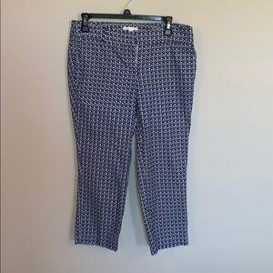 Dalia Printed Ankle Pants (Size 6)